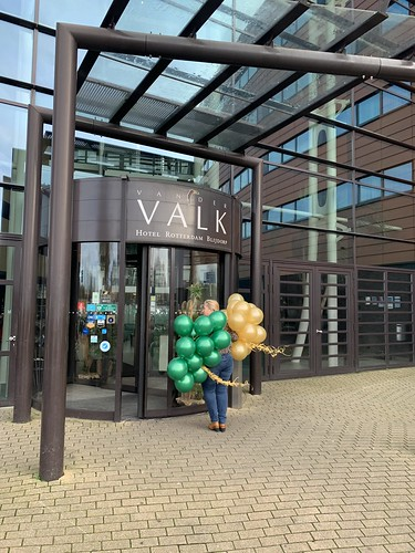 Heliumballonnen Hotel Van Der Valk Blijdorp Rotterdam
