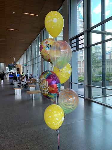 Ballonboeket Beterschap Erasmus Mc Dijkzigt Rotterdam