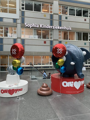 Ballonboeket Bedrukte Folieballon Rond Sophia Kinderziekenhuis Rotterdam